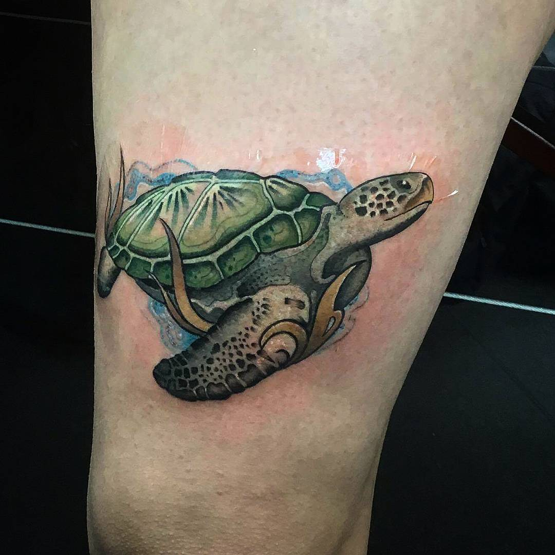 Sea Turtle Tattoos: 62 Turtle Tattoos For Women That Depict Beauty And Peace